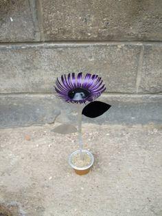 Nespresso Caps Flowers in packagings art  with Nespresso Flowers Caps Biodiversity