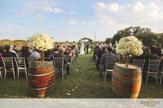Spicewood Springs Vineyard