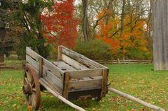 wooden_cart29.jpg