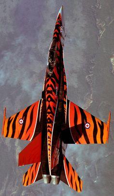 McDonnell Douglas CF-18A Hornet - Royal Canadian Air Force (RCAF), Canada - Tiger scheme.