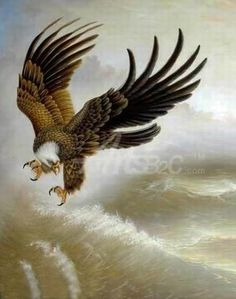 The flying eagle above waves oil painting - paintings for sale,cheap oil paintings supply Cheap Paintings, Animal Paintings, Paintings For Sale, Oil Paintings, Eagle Painting, Eagle Pictures, Oil Painting Supplies, Vintage Illustration Art, Eagle Art