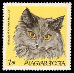 "An illustration of a cat, labeled ""Smoky Persian"", on a Hungarian postage stamp (1968)."