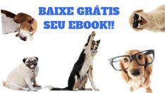 Estes 3 erros comuns do adestramento de cães podem estar fazendo com que seu cão se desvincule de você E Book, Dogs, Animals, Puppy Trainer, Bugs, Animales, Animaux, Pet Dogs, Doggies