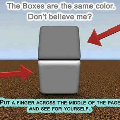 "Optical illusion - this one was featured on National Geographic's ""Brain Games"" - Things aren't always how they appear to be."