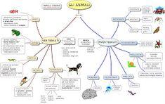 MAPPE per la SCUOLA: ANIMALI VERTEBRATI E INVERTEBRATI