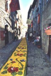 Il tappeto floreale lungo la via in Bolsena