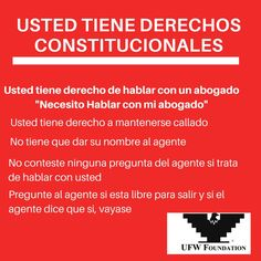 Derechos Constitutionales