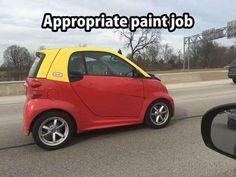 Appropriate Paint Job