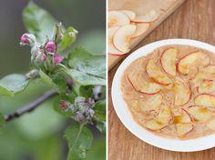 Apfelpfannkuchen mit Kokosmehl udn Kokosblütenzucker