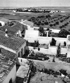 O Algarve por Artur Pastor em 1965