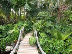 pont de jardin suspendu design par Raymond Jungles