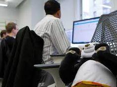 IT Jobs รายได้พิเศษ งานผ่านเนต : งานเสริม สำหรับคนจบแค่ม.6