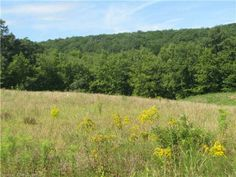Lot 34 Kongscut Valley Trail, Glastonbury, CT. Great opportunity to be a part of the homes at Pine Ridge. Build your dream house! A beautiful setting within the subdivision. $200,000