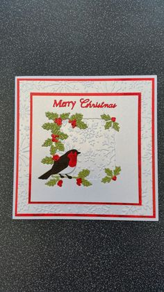 Tattered Lace Melded Robin Die