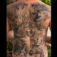 Image of: Sleeve Tattoo Black And White Animal Insect Reptile and An Owlunbelievably Realistic And Completely Healed By Dmitriy Samohin Andy Lungley Animal Nature Tattoos Pinterest 55 Best Animal Nature Tattoos Images Animal Tattoos Awesome
