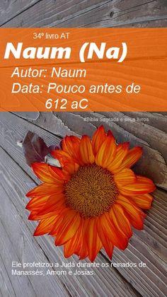 Bíblia Sagrada e seus livros: NAUM - Autor e Data (Na)