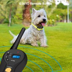 FOCUSPET Remote Dog Training Collar, Electric Dog Training Shock Collar with Remote 655 yd Rechargeable and Waterproof 16 Levels Tone,Vibration & Shock for Small Medium & Large Dogs Large Dog Breeds, Large Dogs, Training Collar, Dog Training, Pet Trainer, Dog Shock Collar, Pet Dogs, Pets, Electric Shock