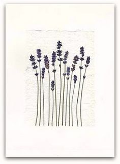 Pressed Flower Art - elegant simplicity.