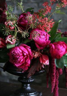 Frivolous Fabulous - Beautiful Flowers for Miss Frivolous Fabulous