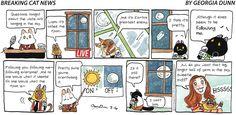 Breaking Cat News by Georgia Dunn for Jul 16, 2017 | Read Comic Strips at GoComics.com