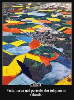Aerial View of the Netherlands during Tulip Season. - Good Day - Good Day Meme - - Aerial View of the Netherlands during Tulip Season. The post Aerial View of the Netherlands during Tulip Season. appeared first on Gag Dad. Cool Pictures, Cool Photos, Interesting Photos, Tulip Season, Tulip Fields, Bournemouth, Birds Eye View, Drone Photography, Aerial View