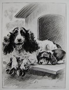 COCKER SPANIEL Print Mother and Child Art Vintage 1940s Cocker Spaniel Gallery Wall Art Gift For Dog Lover 931 by plaindealing on Etsy https://www.etsy.com/listing/213275765/cocker-spaniel-print-mother-and-child