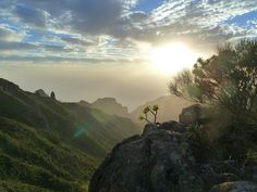 Tenerife, Ilhas Canárias