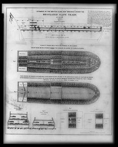Diagrama del Brookes (1788): distribución de los esclavos en un barco negrero