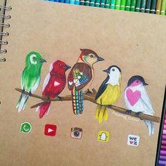 Birds application