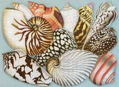 One of the most prolific and popular needlepoint designers, Needlepoint.Com has the full collection of handpainted needlepoint canvases by Melissa Shirley Designs. Seashell Painting, Silk Painting, Painting & Drawing, Needlepoint Designs, Needlepoint Canvases, Nautical Prints, Hand Painted Canvas, China Painting, Fish Art