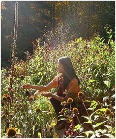 sandra lory~ folk herbalist & artist - Another! Healing Herbs, Medicinal Plants, Herb Farm, Herbal Magic, Hedge Witch, Natural Kitchen, Urban Homesteading, Urban Farming, Plants