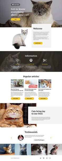 All About Cats #website #template. #themes #business #responsive #websitethemes