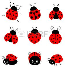 bug: Cute colorful ladybugs clipart collection isolated on white background
