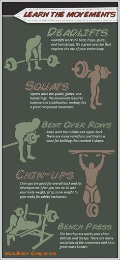 How to Build Muscles - Tips For Beginners #bodybuildingnutrition