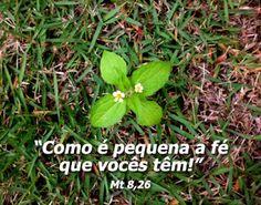 """LEITURA ORANTE: Mt 8,23-27 - """"Como é pequena a fé de vocês!"""""""