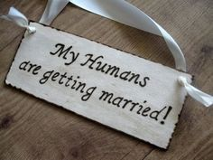 Get the pets involved. Such a cute wooden sign! | Community Post: 30 Swoon-Worthy Engagement Party Ideas