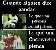 Read Pandas from the story CNCO MEMES© by Annstylxs (❝Danger❞) with reads. Memes Cnco, Funny Memes, Boy Bands, Humor, My Love, Reading, Life, Kawaii, Love Of My Life