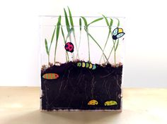 Now that spring is finally here, we've been planting all sorts of seeds on our window sills. From tomatoes to cucumbers, our family has been watching our plants sprout and grow. When my kids wanted to get in on the action, we set up this easy CD garden using wheatgrass seeds. To their delight, the wheatgrass seeds have sprouted in a matter of days. They now take turns tracking and watering their growing garden every day.