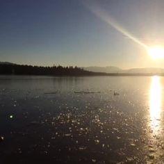 Man soll es nicht glauben, aber der #Kirchsee bei #BadToelz in #Oberbayern ist zugefroren. #Sonne #Sunset #Bayern #echteinladend #ice