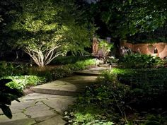 How to Illuminate Your Yard With Landscape Lighting Inventive outdoor lighting solutions create stunning landscapes that can be enjoyed during the day and at night. shares how to illuminate a yard with landscape lighting in 3 easy steps. Pathway Lighting, Backyard Lighting, Lighting Ideas, Lighting Solutions, Path Lights, Solar Lights, Solar Led, Patio Lighting, Wall Lighting