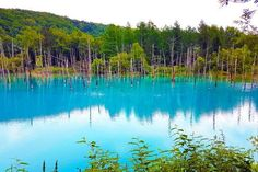 Overview of the Blue Pond in Biei, Hokkaido