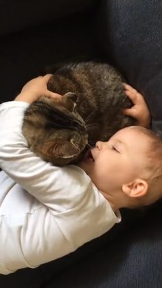 Cute Funny Babies, Cute Funny Animals, Cute Baby Animals, Funny Kids, Animals And Pets, Cute Dogs, Cute Cats And Kittens, I Love Cats, Crazy Cats