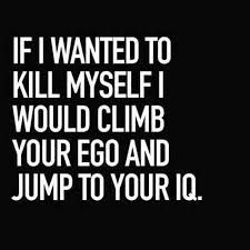 Image result for funny sarcastic quotes