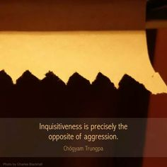 """Inquisitiveness is precisely the opposite of aggression"" - Chogyam Trungpa"