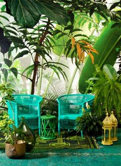 Tropical Jungle style, home South Africa magazine2