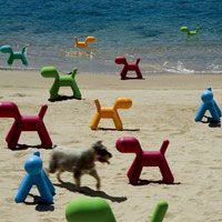 Magis - Eero Aarnio - Puppy chairs!