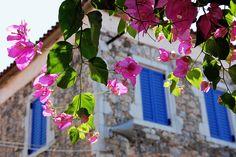 Greek colours