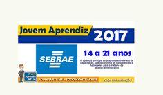 Jovem Aprendiz 2017 SEBRAE – Inscrições até 10 de Janeiro