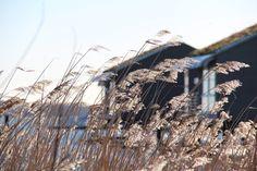 Traumhafte Ostsee im Winter: Schwimmende Ferienhäuser auf Rügen. Perfekt für Familien mit Kindern.  #Ostsee #Rügen #Winterurlaub #Reisen #Deutschland #Ferienhäuser #Hausboot
