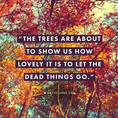 Letting things go.